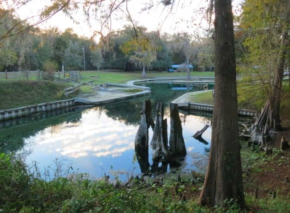 The main spring and swimming area at Hart Springs County Park.