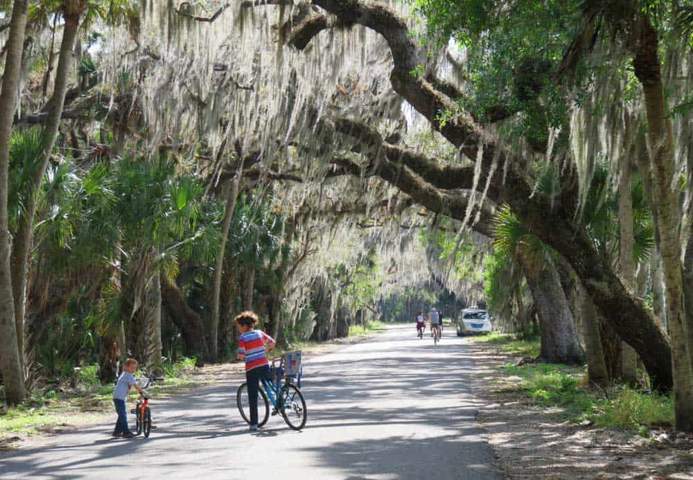 The seven-mile road through Myakka River State Park is ideal for bicyclists, and many were present on a Saturday afternoon in March.