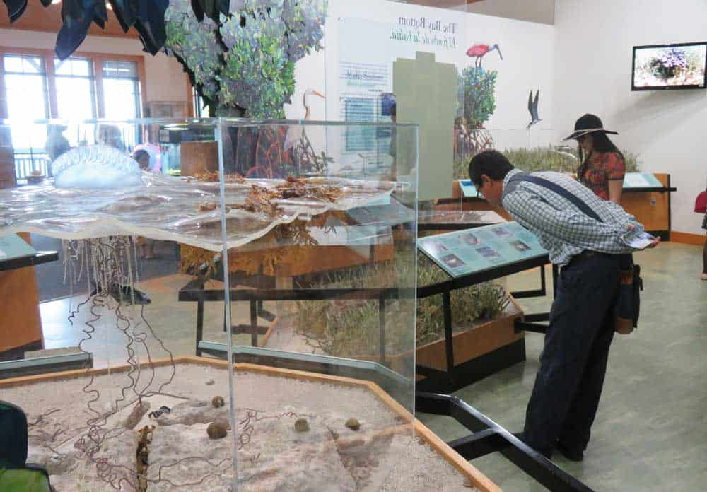 Displays in the visitor center at Biscayne National Park in Homestead. (Photo: Bonnie Gross)