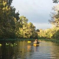 wekiva river