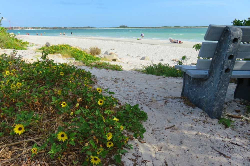 At the southern tip of Pass A Grille, the beach is good for shelling.