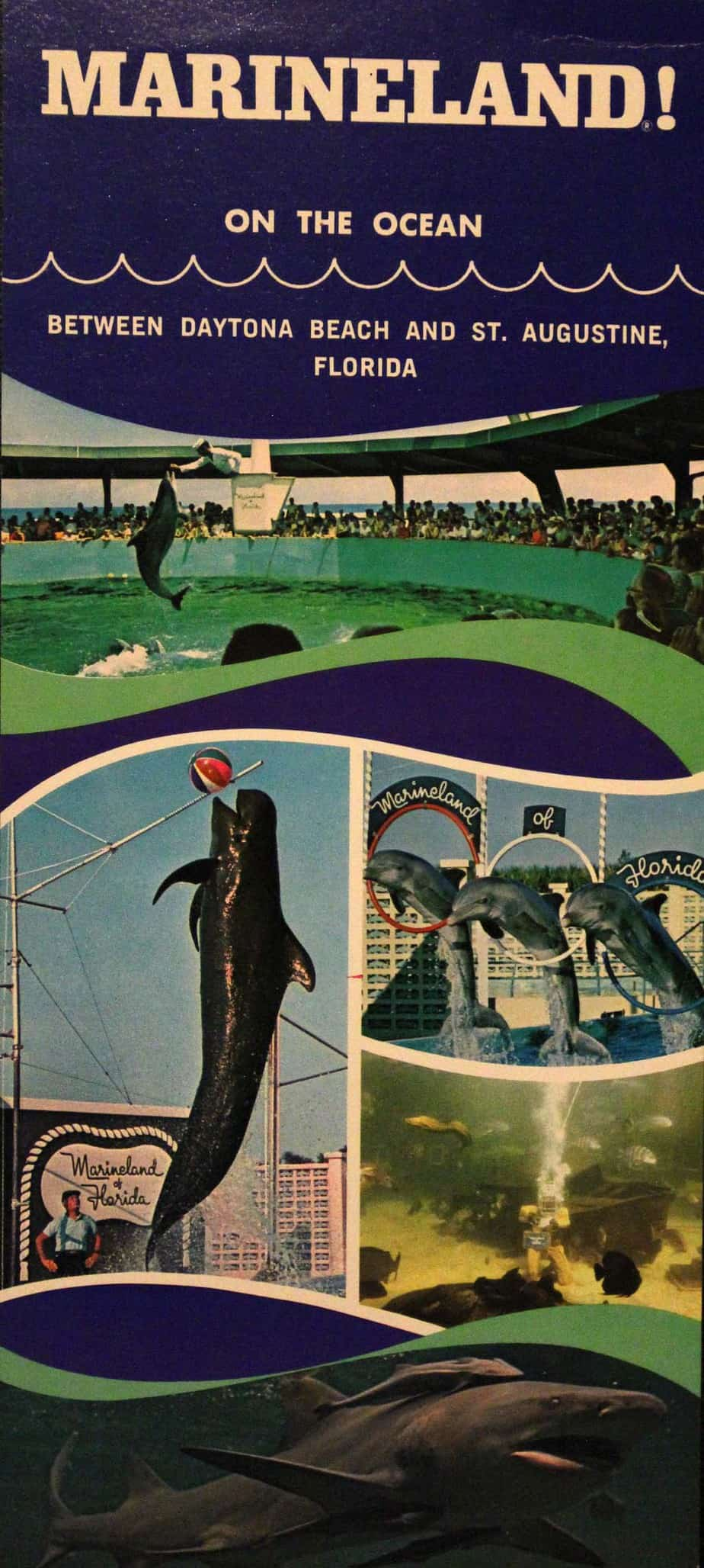 An old brochure from the Marineland Florida attraction during its heyday.