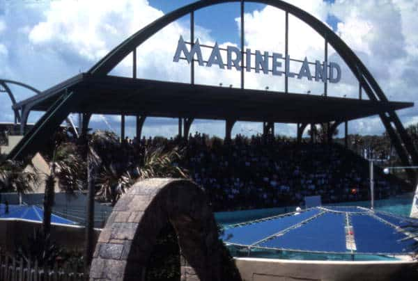 marineland stands Marineland: Surprising story of legendary 'oceanarium'