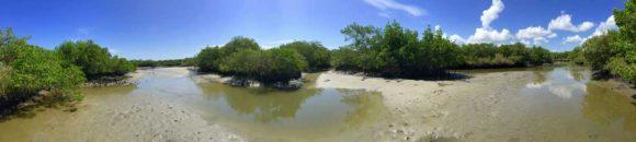 Kayak New Smyrna Beach waterways (Photo: Richard Barrett)