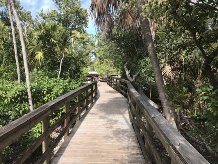 Golden Orb trail at Long Key State Park. (Photo: Bonnie Gross)