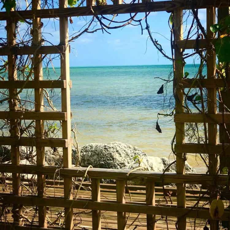 One of the new structures at Long Key State Park is a seaside platform that would make a perfect place for a small, impromptu wedding. This is a window in the platform's lattice-work frame. (Photo: Bonnie Gross)