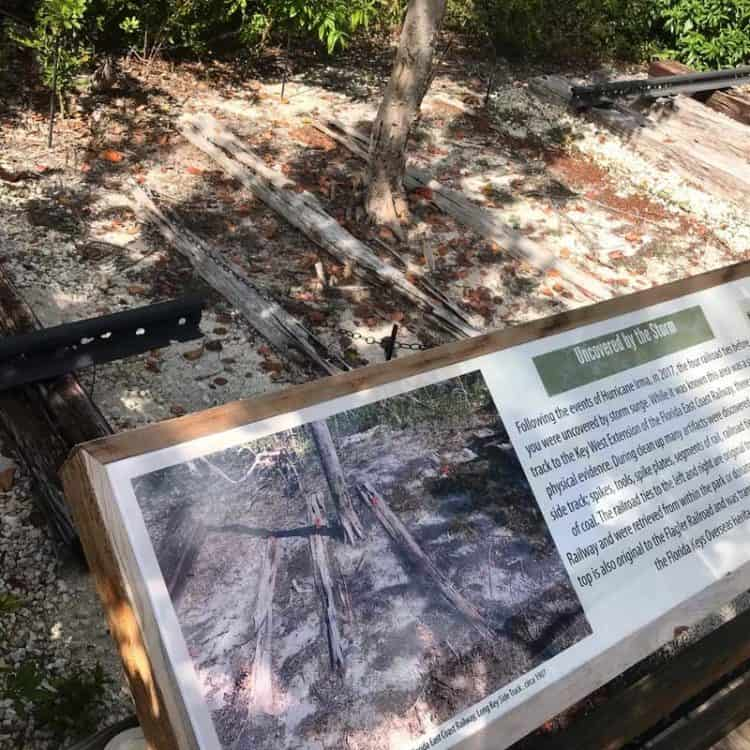 The storm surge from Hurricane Irma exposed these railroad ties from Henry Flagler's railroad, which opened in 1912. The tracks had been buried in soil and sand. A small trail leads to this exhibit. (Photo: Bonnie Gross)