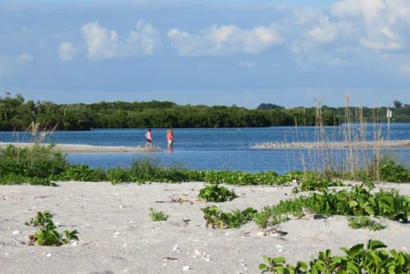 Sandbars at the inlet at the end of Stump Pass Beach State Park.