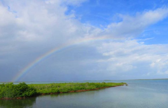 Biking in Key West: Rainbow viewed along Florida Keys Overseas Heritage Trail near Key West.