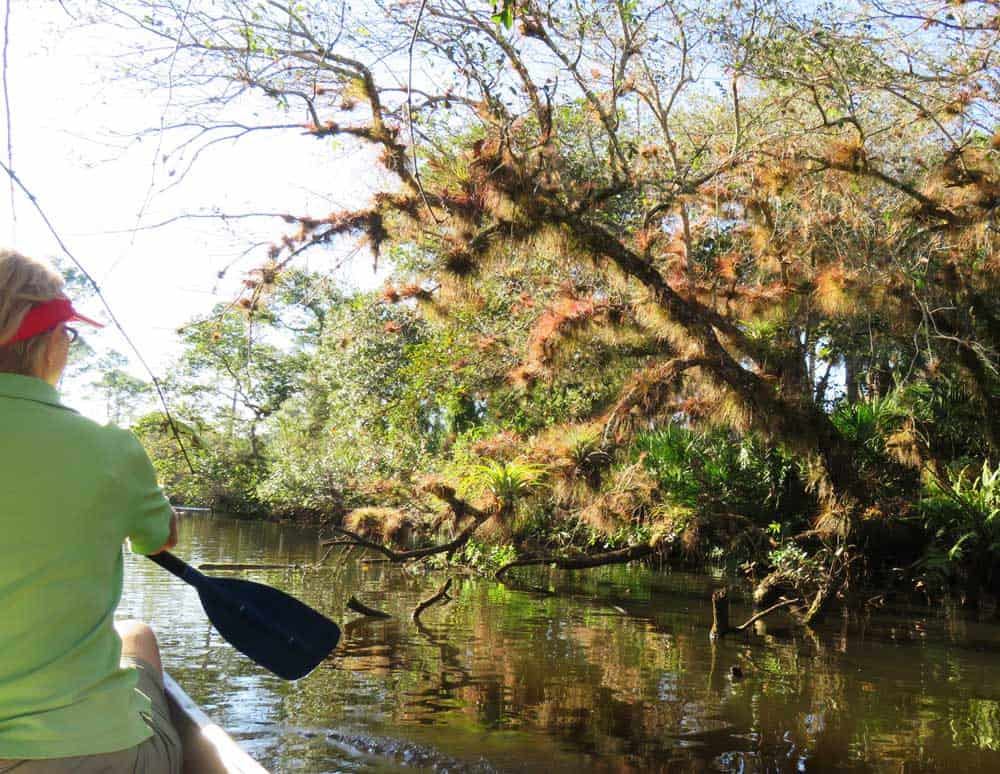 Fort Pierce is one of the best towns to base a kayaking getaway because of the St. Lucie River South Fork, which is scenic and filled with wildlife. (Photo: Erin Blasco)