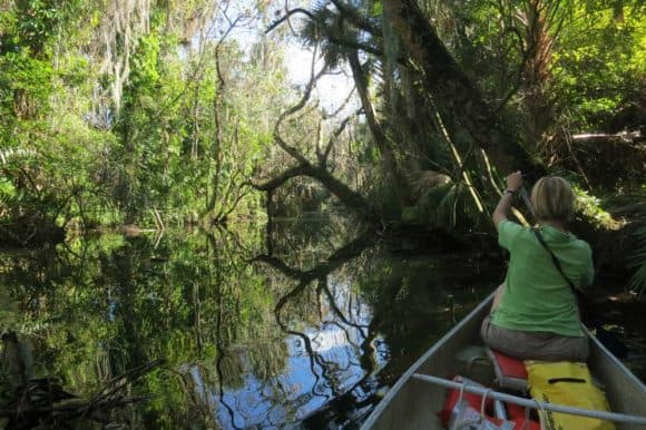 Northeast Road Trip >> Along Caloosahatchee River: Kayak trails, rustic scenery ...