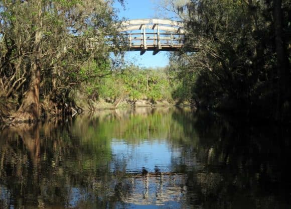 The view from the kayak and canoe launch at Alderman's Ford Park near Tampa. (Photo: Bonnie Gross)
