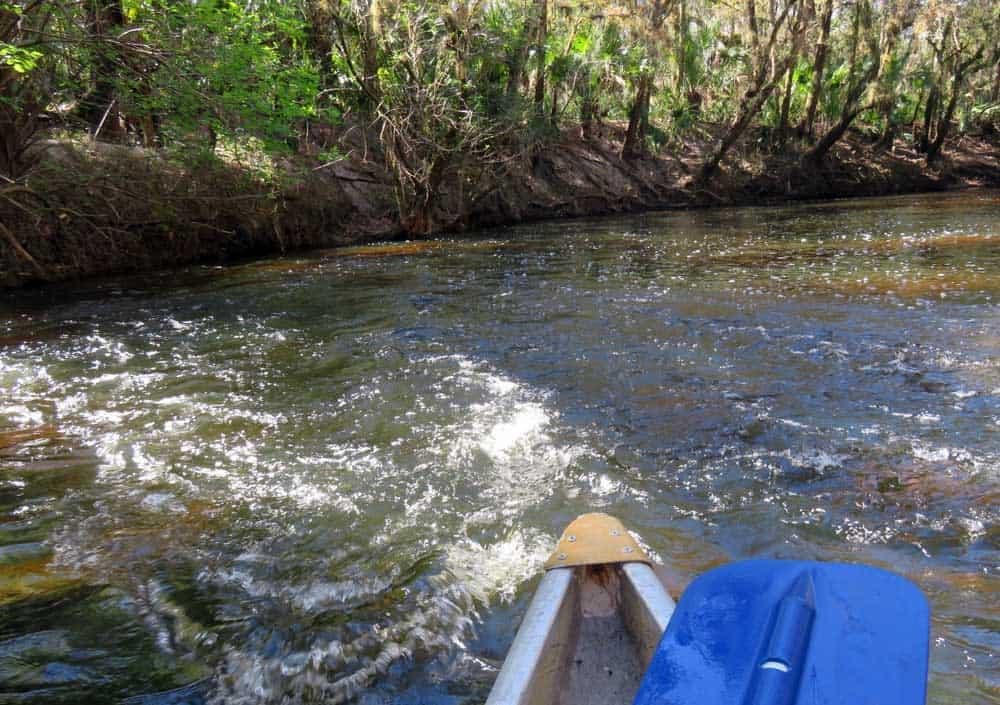 Fun times paddling through the shoals on the Alafia River near Tampa. (Photo: Bonnie Gross)
