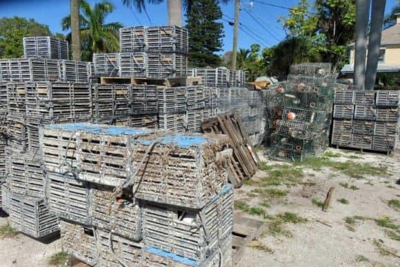 Crab traps piled nearing the working waterfront in Cortez Florida. (Photo Bonnie Gross)