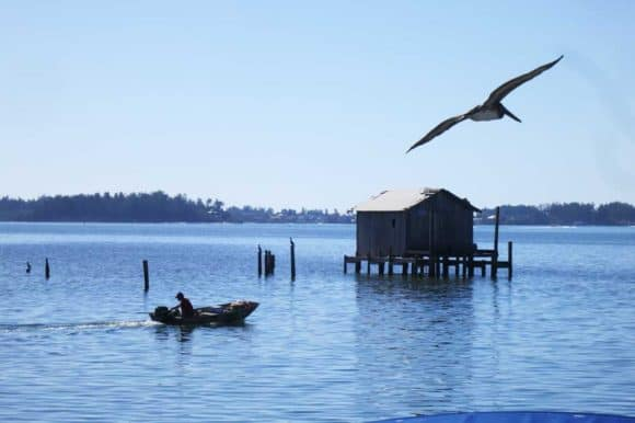 The view at Star Fish Company includes an iconic fish shack on stilts that appears on all the Cortez Florida marketing materials. (Photo David Blasco)
