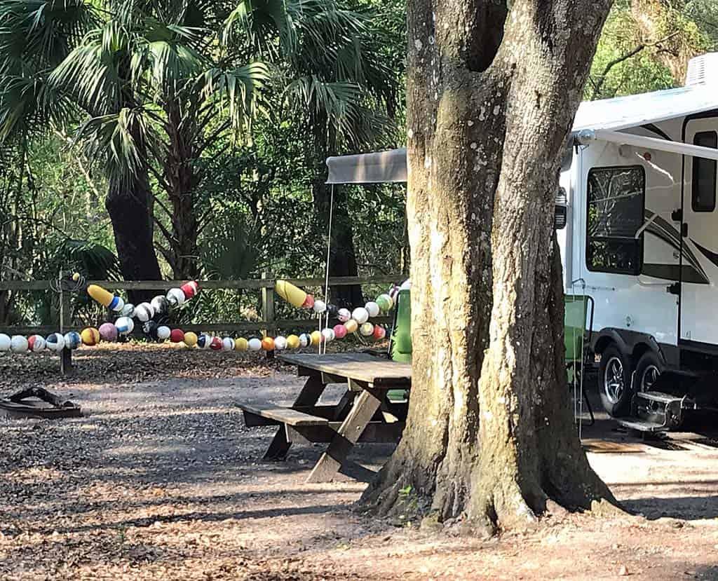 best camping near tampa hillsborough river state park