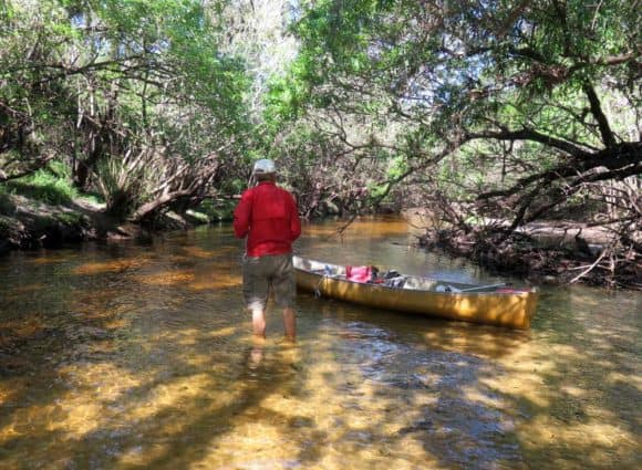 A sandbar along the river through Little Manatee River State Park required pulling our canoe for a brief walk in ankle keep water.