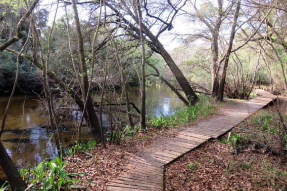 Little Manatee River State Park has a beautiful trail that gives you views of the river on either a 3-mile loop, or a 6.5 mile hike if you add another loop. (Photo: Bonnie Gross)