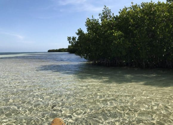 On the bay side of Bahia Honda State Park, the water is shallow and crystal clear, making it an appealing kayak destination. (Photo: Bonnie Gross)