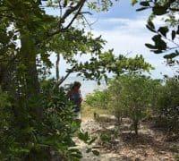 Nature trail at Big Pine Key.