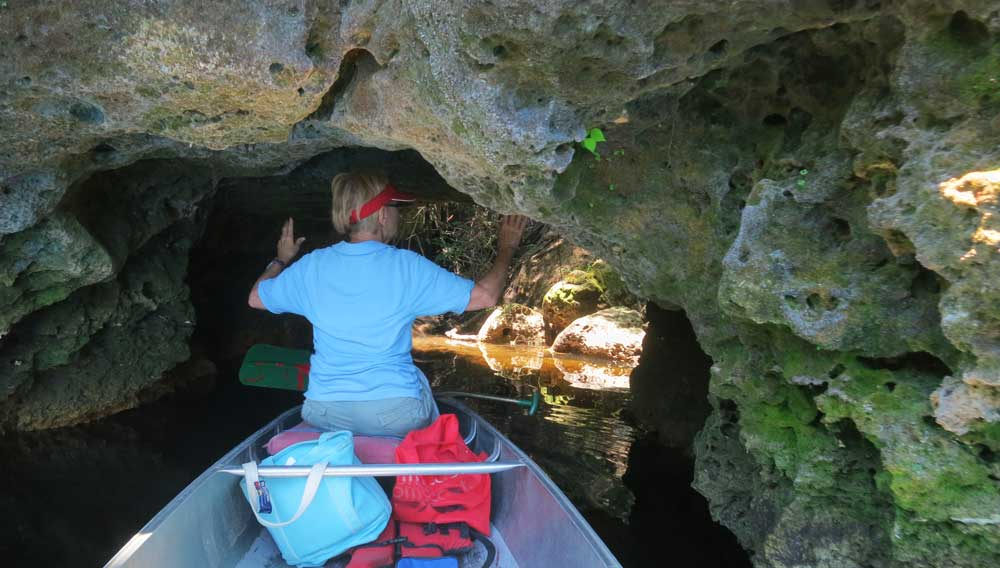 The Suwannee Rive has limestone rock banks that form interesting caves and crevices. (Photo: David Blasco)