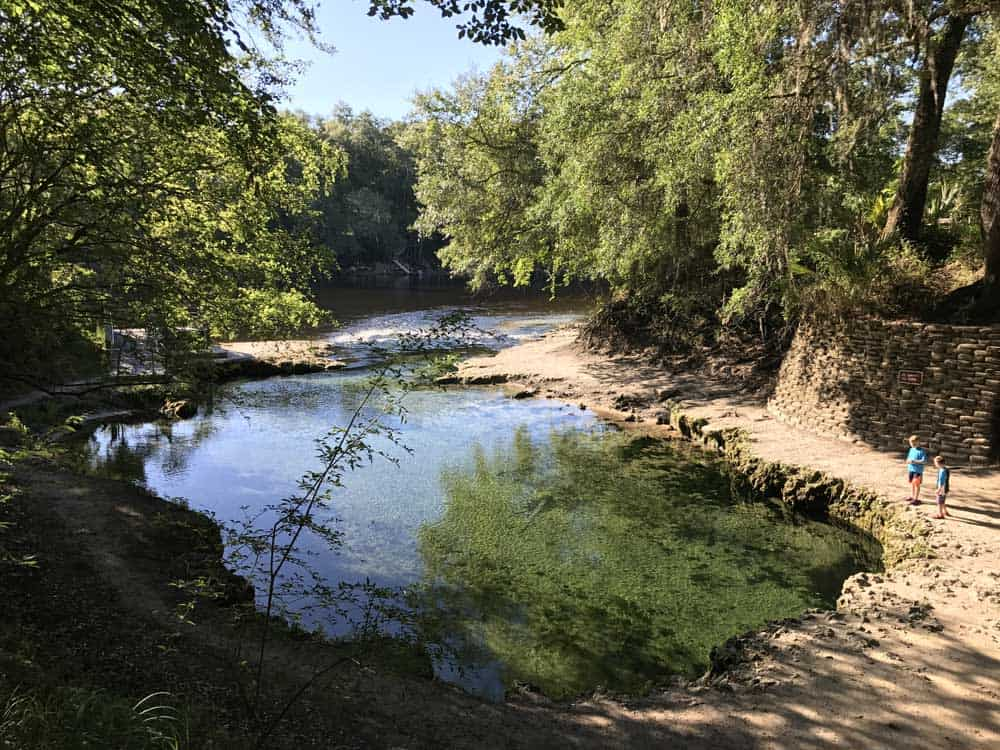 Lafayette Blue Springs State Park forms two beautiful pools of water, each lined with limestone rocks. this is the lower pool, which spills into the Suwanee River. (Photo: Bonnie Gross)