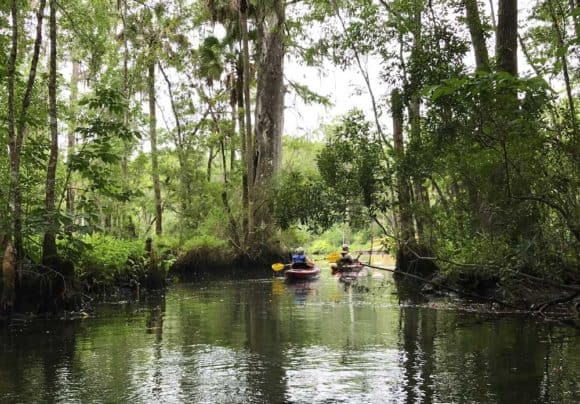 Kayaking on Wakulla River below the famous Wakulla Springs. (Photo: Bonnie Gross)