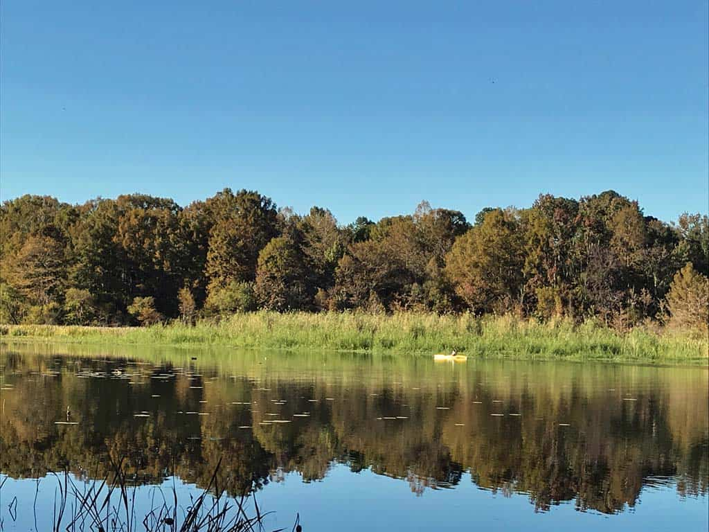 kayaking on lake seminole three rivers state park