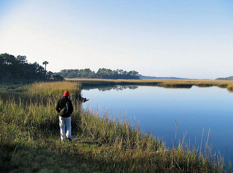 Little Talbot Island Myrtle Creek 1 8 inviting campgrounds at Florida State Parks along I-95