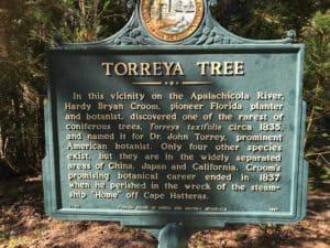 Torreya Tree Marker at Torreya State Park