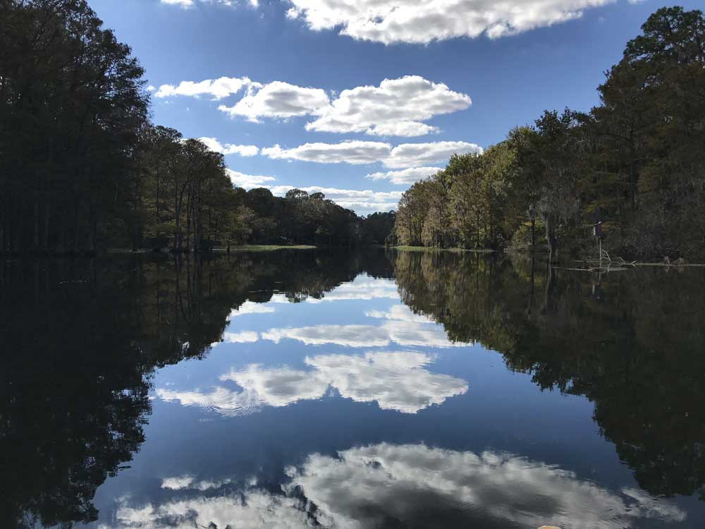 Rainbow River near Dunnellon is an aquatic preserve and has strict rules of what you can bring to the river.