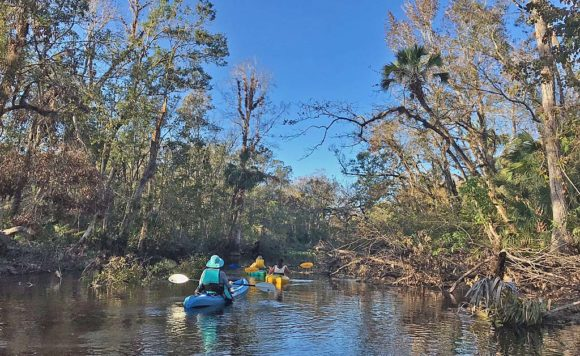 Nature parks in Orlando: Wekiva River near Katie's Landing.
