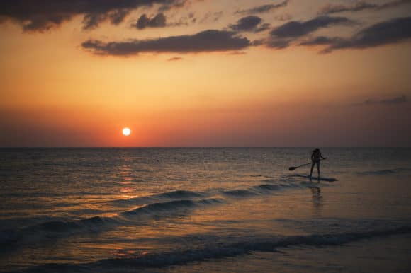 paddleboarding Five favorite places to paddleboard in Tampa Bay area