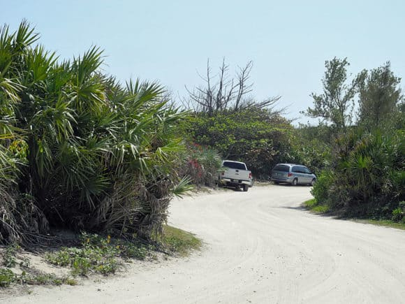 hutchinson island beach 7 things to do outdoors in Florida