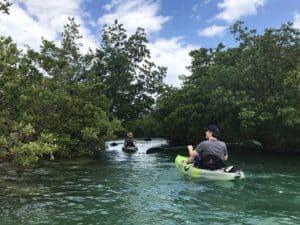 oleta paddlers Oleta River State Park feels like island getaway in Miami urban sprawl