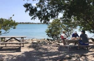 oleta picnic Oleta River State Park feels like island getaway in Miami urban sprawl