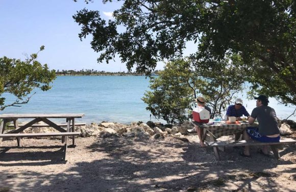 Picnic tables at Oleta River State Park have a good view. (Photo: Bonnie Gross)