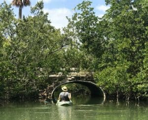 oleta tunnel Oleta River State Park feels like island getaway in Miami urban sprawl