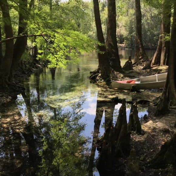 High Springs is one of the best towns for kayaking in Florida: One big reason is the Santa Fe River, where we delighted in this small unnamed spring near Rum Island (Photo: Bonnie Gross)
