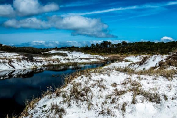 topsail dunes 1 Beyond the shoreline: Exploring Fort Walton Beach