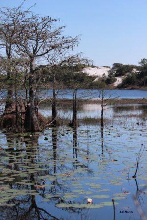 topsail lake Beyond the shoreline: Exploring Fort Walton Beach