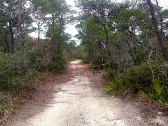 topsail trail Beyond the shoreline: Exploring Fort Walton Beach