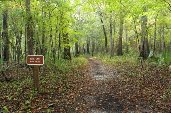 Entrance to the Lime Sink Run Trail