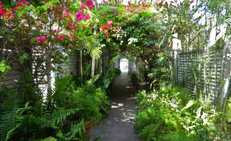"""Key West house tours: """"In Key West, you never know what's behind that gate that you walk by."""""""