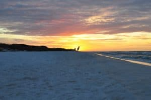 first watch grayton beach 5 things to do outdoors in Florida for 2020