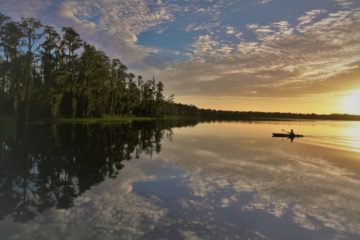 sunrise paddle wilinski 2018 Winners of the Florida State Parks Summer Photo Contest