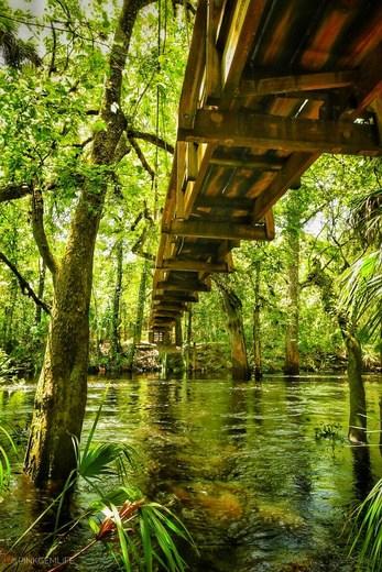 bridge hillsborough riveer state park