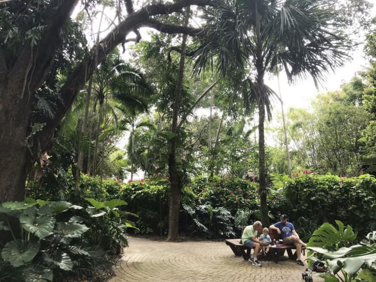Flamingo Gardens has lush gardens of tropical and semi-tropical plants. (Photo: Bonnie Gross)