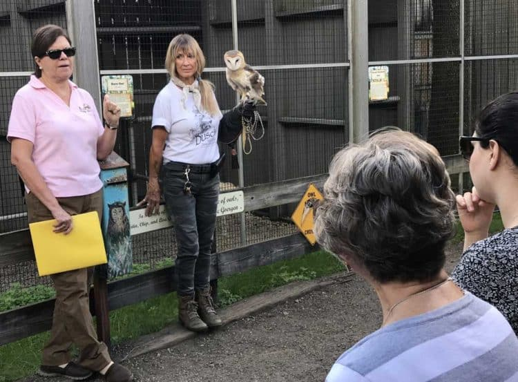 Owl program at Busch Wildlife Sanctuary, Jupiter, Florida. (Photo: Bonnie Gross)