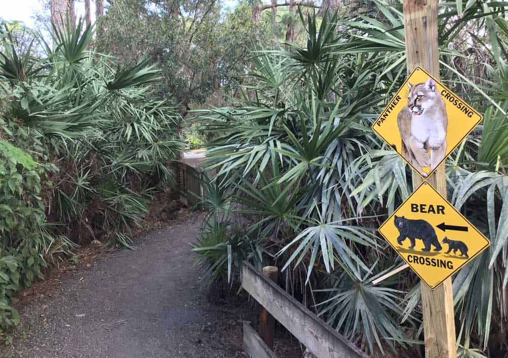 Florida wildlife rescue centers you can visit: A trail at Busch Wildlife Sanctuary in Jupiter. (Photo: David Blasco)